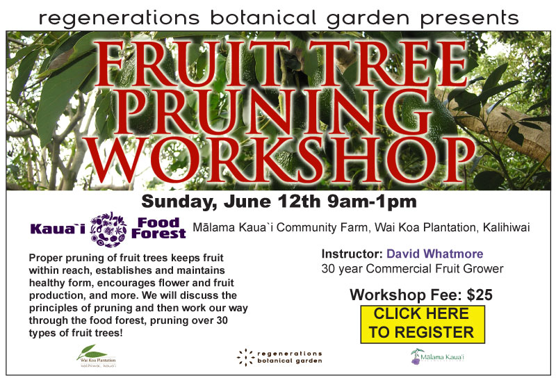 Fruit-Tree-Pruning-Workshop-for-website