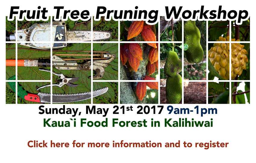 pruning-workshop-website