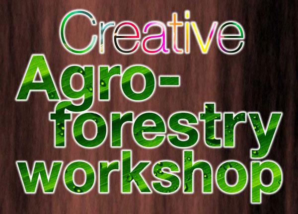Creative-Agroforestry-web-banner-600