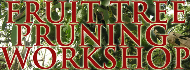 Fruit-Tree-Pruning-Workshop-banner