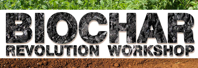 Biochar-Workshop-website